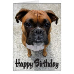 Boxer Puppy Dog  Happy Birthday Card  - Verse