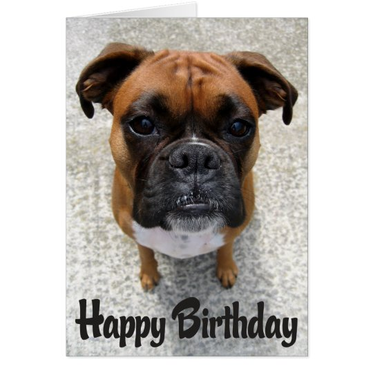 Boxer Puppy Dog Happy Birthday Card Verse – Happy Birthday Cards with Dogs