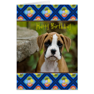 Boxer Puppy Dog in Retro Pattern Frame Card