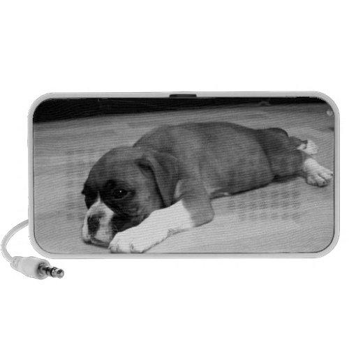 Boxer puppy doodle speaker doodle