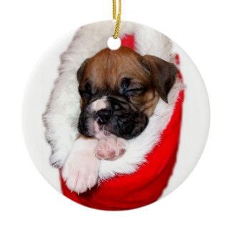 Boxer puppy in Christmas Stocking ornament ornament