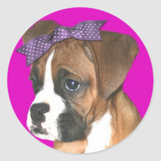 Boxer puppy in Pink stickers