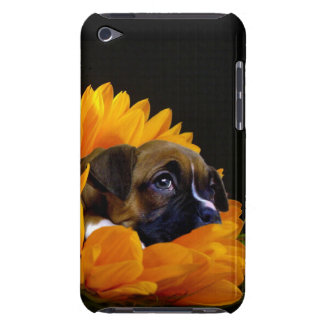 Boxer puppy in sunflower barely there iPod cases