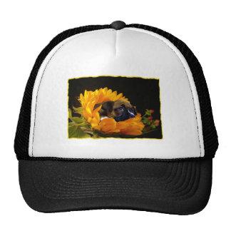 Boxer puppy in sunflower hat