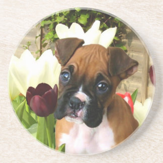 Boxer puppy in tulips drink coaster
