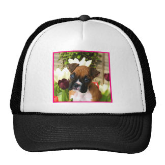Boxer puppy in tulips mesh hat