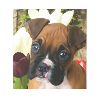 Boxer puppy in tulips notepad