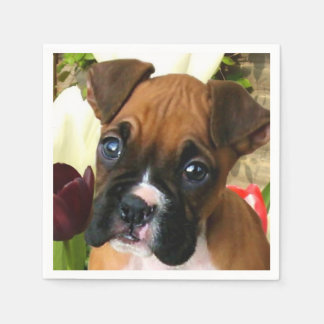 Boxer puppy in tulips standard cocktail napkin