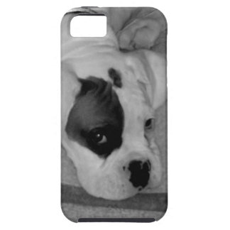Boxer puppy iPhone SE/5/5s case