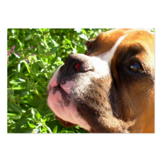 Boxer puppy large business cards