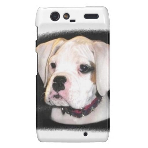 Boxer puppy Motorola Droid Razr phone case