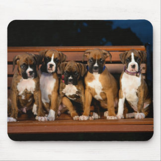 boxer puppy mouse pad