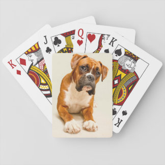 Boxer puppy on ivory cream backdrop. card deck