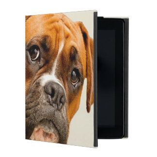 Boxer puppy on ivory cream backdrop. iPad cover
