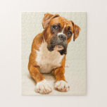 "Boxer puppy on ivory cream backdrop. jigsaw puzzle<br><div class=""desc"">Boxer dog on ivory backdrop</div>"