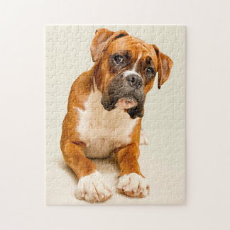 Boxer puppy on ivory cream backdrop. jigsaw puzzle