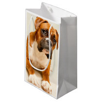 Boxer puppy on ivory cream backdrop. small gift bag