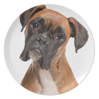Boxer Puppy Party Plate