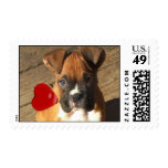 Boxer puppy postage