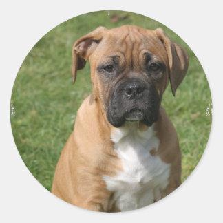 Boxer Puppy Sticker