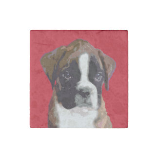 Boxer puppy stone magnet