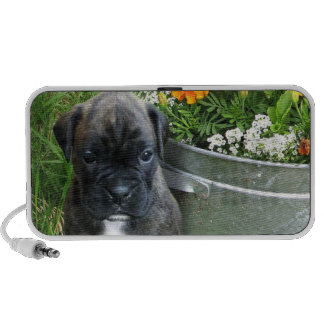 Boxer puppy travelling speakers