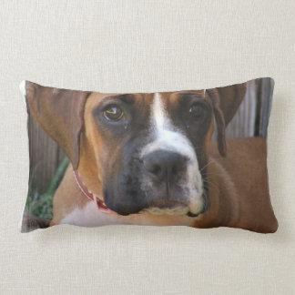 Boxer Rescue Pillow