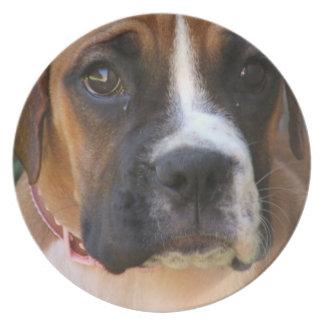 Boxer Rescue Plate