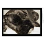 Boxer sleeping greeting card