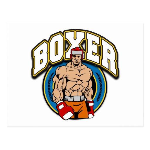 Boxer Sparring Partner Postcards