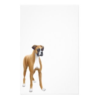 Boxer Stationery