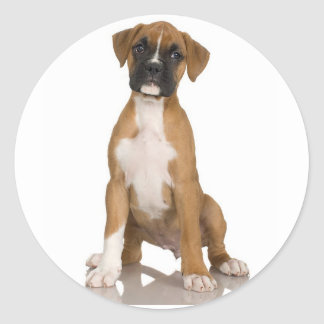 Boxer Sticker