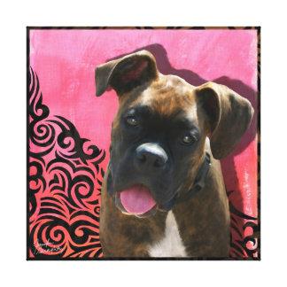 Boxer Stretched Canvas Canvas Print
