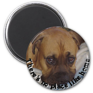 Boxer:  There's no place like home Magnet