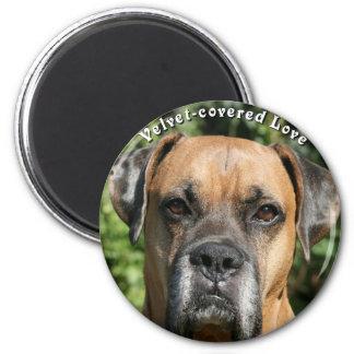 Boxer:  Velvet-covered Love Magnet