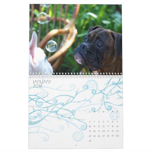 Boxers 2011 Calendar