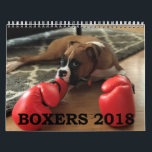 "BOXERS 2018 CALENDAR<br><div class=""desc"">Get your BOXERS 2018 Calendar! We searched far and wide for fantastic photos of Boxers for this calendar, and after running a contest among boxer enthusiasts all over the world, chose the best of the best! This calendar represents our beloved Boxer dogs, charming and sweet, just the way we love...</div>"
