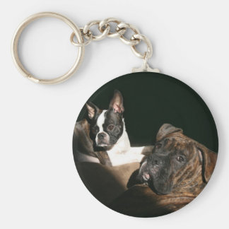 Boxers and Bostons: Awesome Twosome 2 Basic Round Button Keychain