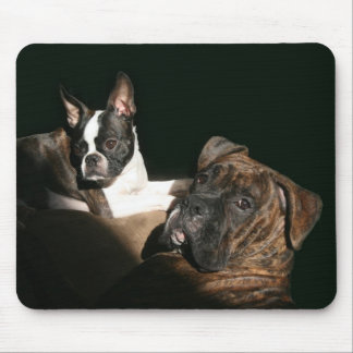 Boxers and Bostons: Awesome Twosome 2 Mouse Pad