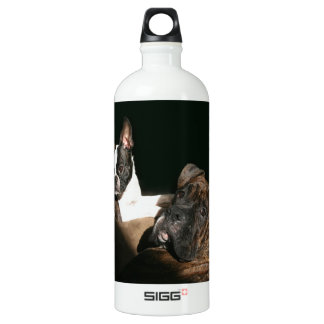 Boxers and Bostons: Awesome Twosome 2 Water Bottle