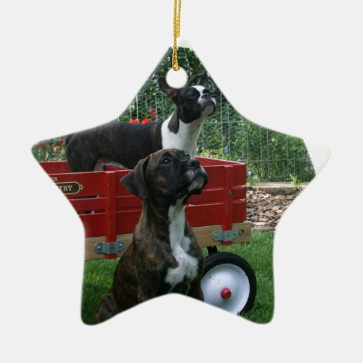 Boxers and Bostons: Little Sweethearts Double-Sided Star Ceramic Christmas Ornament