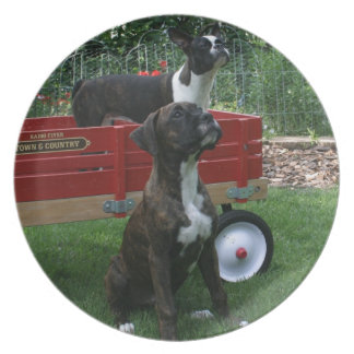 Boxers and Bostons: Little Sweethearts Plate