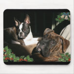 Boxers and Bostons: Pals Mousepad