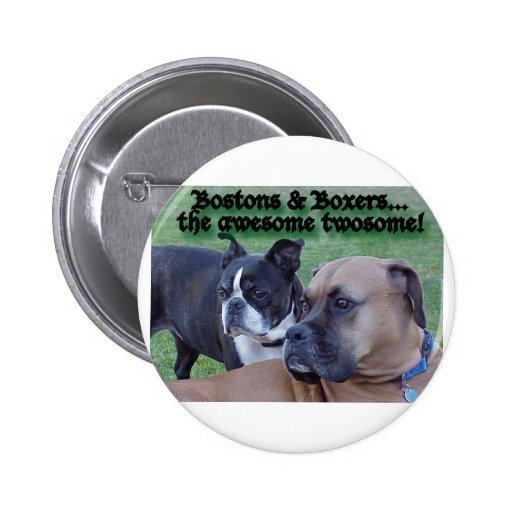 Boxers and Bostons: The Awesome Twosome Buttons