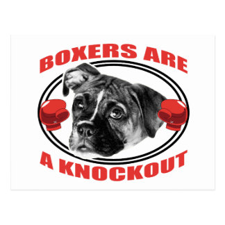 Boxers Are A Knockout Postcard