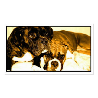 Boxers business card