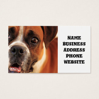 boxer's face weeping of friendly behavior business card