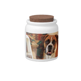 boxer's face weeping of friendly behavior candy jars