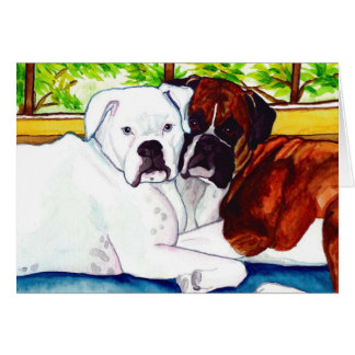Boxers Fawn and White Card