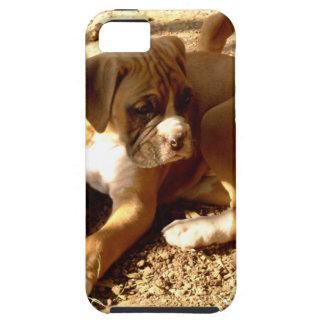 Boxerwelpe Funda Para iPhone SE/5/5s